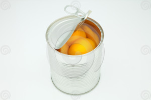BPA_safe_plastic_canned_foods_lowres_31589494